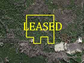 mississippi hunting leases timberland realty llc